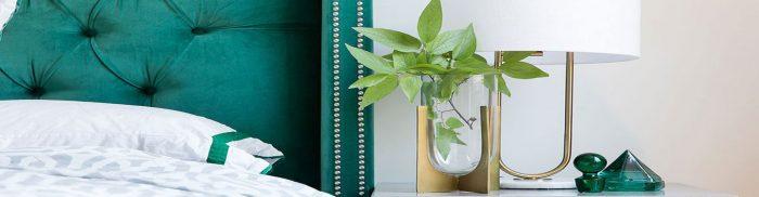 رنگ سبز در طراحی دکوراسیون داخلی